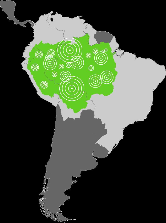 Amazon Fish Project